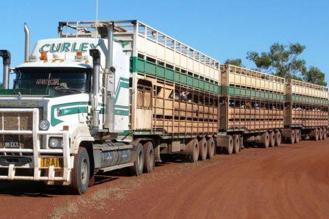 camion-australia