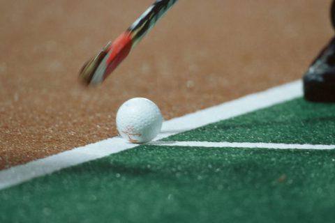 hockey-hierba
